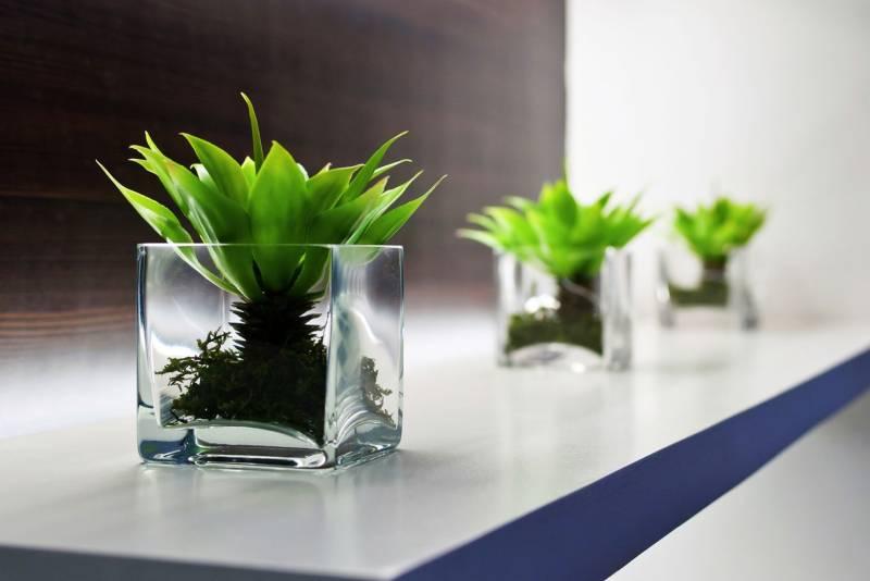 cvijece-ideje-prozirna-tegla