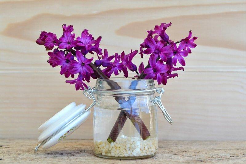 cvijece-u-vazi-800